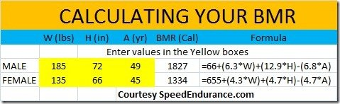 CALCULATING YOUR BMR