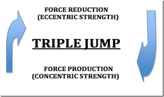 Force reduction and production in the triple jump