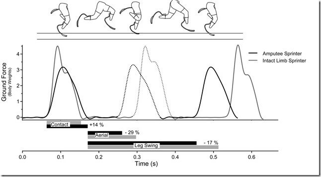 vertical forces applied to the ground and stride time patterns of a double-limb amputee runner
