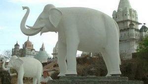 SHIN SPLINTS REDUX – White Elephant