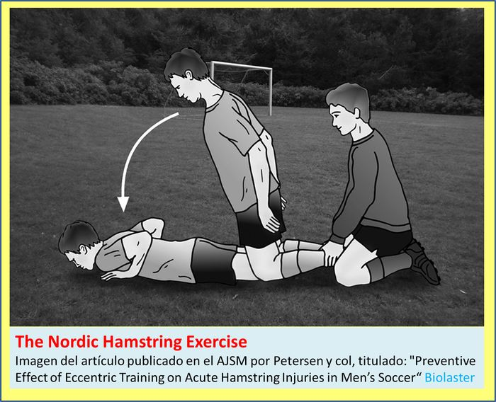 Nordic_Hamstring_Exercise