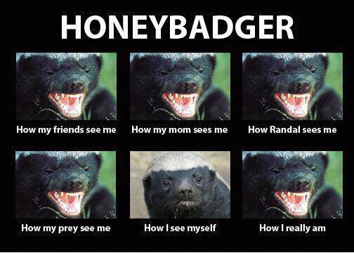HoneyBadger - What People Think